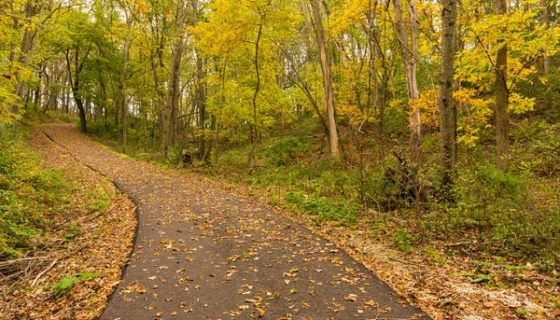 Featured Image for Bike Trails from HMA