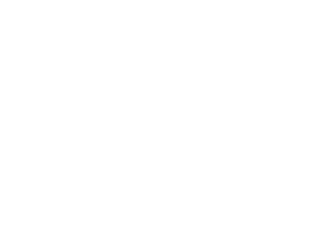 New Country lexus Logo